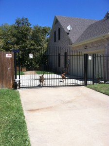 Wrought Iron Fence by Hahn Painting Services